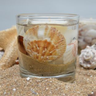 Seaside Inspired Driftwood Scented Candle Gel Tumbler